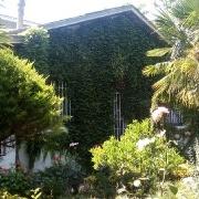 ویلا باغ سرخرود زیبا